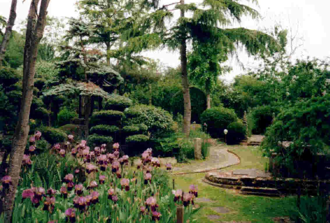 Pureland Japanese Garden Part 74